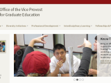 Stanford Program Promotion*